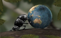 Beetle rolls planet earth