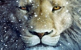 lion and white snowflakes