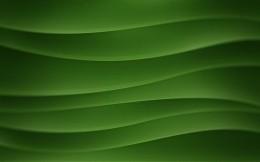 Bezier curves on a green background, abstract