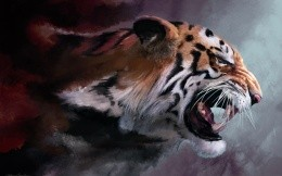 Enraged tiger picture to the desktop