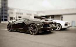 Black and white photo of cars Lamborghini HD 2560x1600.