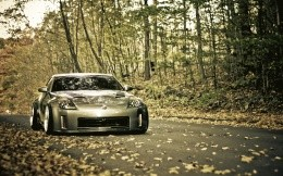 Nissan 350z picture on a forest road
