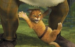 Cat from Shrek