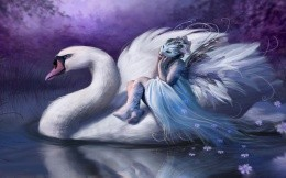 Fairy and the Swan