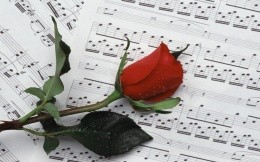 Red rose on notes