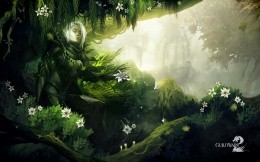 Art with the druid on the game Guild Wars 2