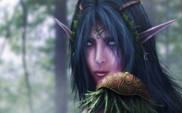 Elf from the game World Of Warcraft (WoW)