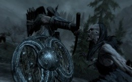 The battle of the game TES: Skyrim