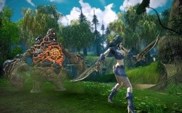 The battle with the monster of Sporewalkers MMORPG Tera