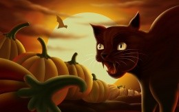 Toothed cat on the night of All Saints
