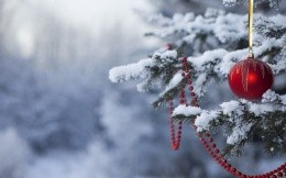 Tree in the snow with a red toy and beads
