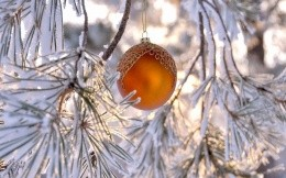 Winter frost Christmas ball