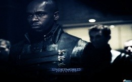The movie Underworld Evolution - Wallpaper Underworld Evolution - Movie