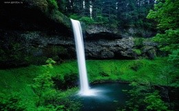 Beautiful forest waterfall wallpaper for your computer.