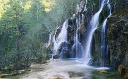 Beautiful waterfall in a mountain forest
