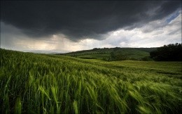 Green field with storm clouds - nature theme, wallpaper, stylish and beautiful