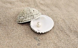 Pearl in a shell on the sandy shore, photo wallpaper
