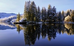 Snow on the fir trees lake reflection