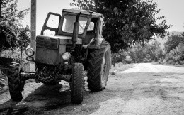 Domestic tractor, b / w photos