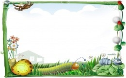 Drawn wallpapers - grass and caterpillar