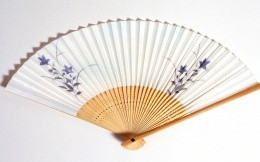Fan of Japanese