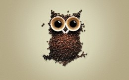 Owl of coffee beans and two cups of coffee