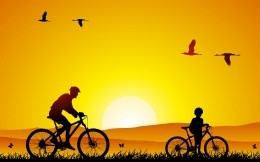 Silhouettes of cyclists and flying birds, a father and son on the bikes, wallpaper.