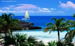 Paradise - palm trees, sea, sky and yacht - image for your desktop