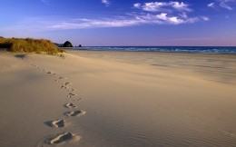 Playa and footprints in the sand - Wallpaper
