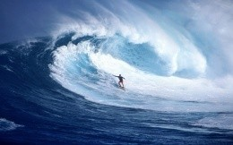 Seaside - surfing in the sea, wallpaper, surfer, wave, sea