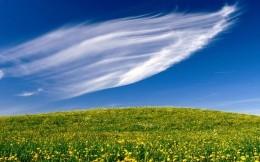 cloud in form of a wing