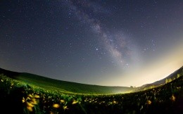 Stargazing at flower meadows