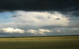 Storm over the field of buckwheat