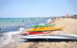 Surfboards on the coast