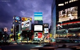 The views of the central districts of Tokyo, Japan.