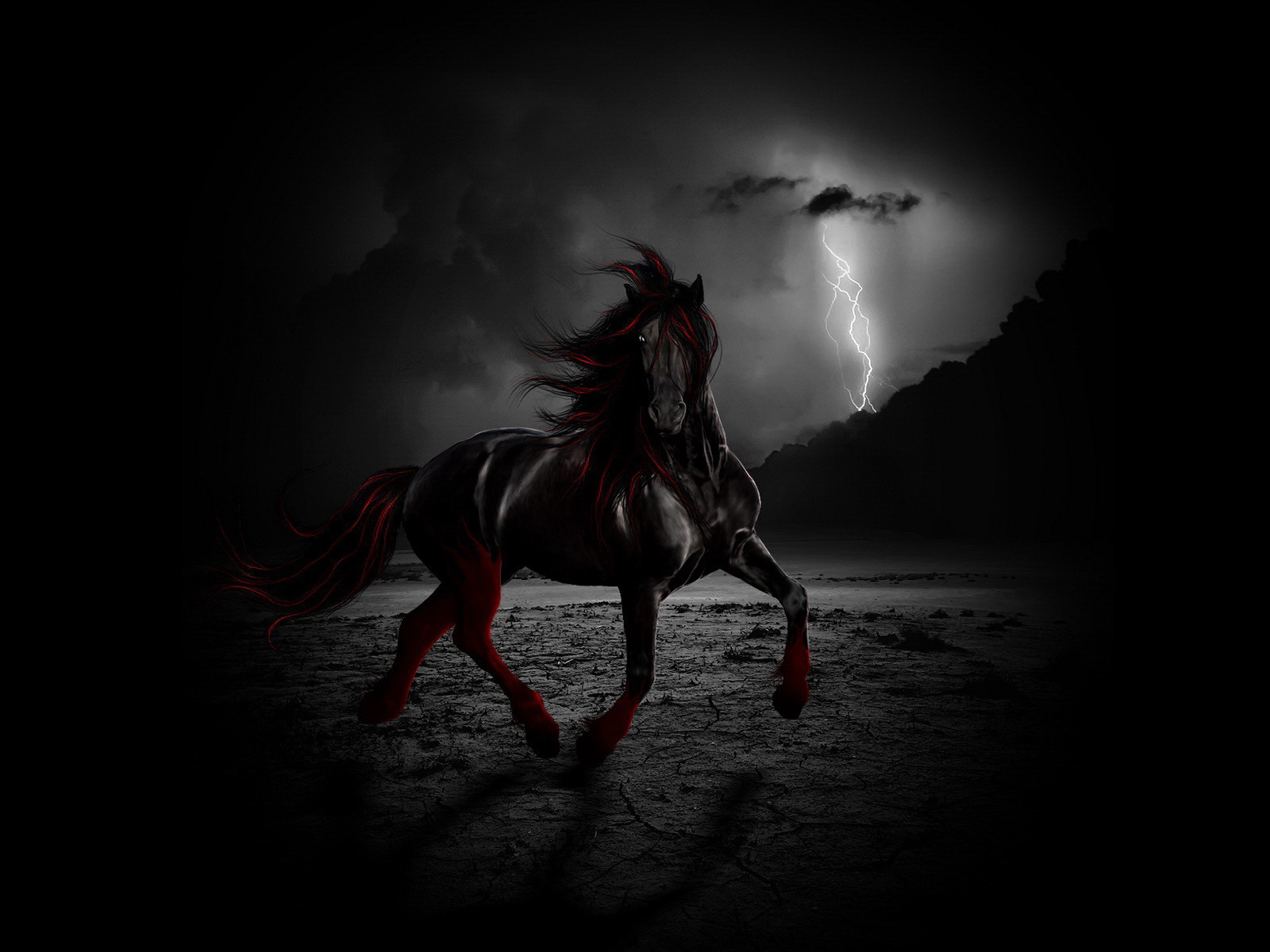 black and red horse