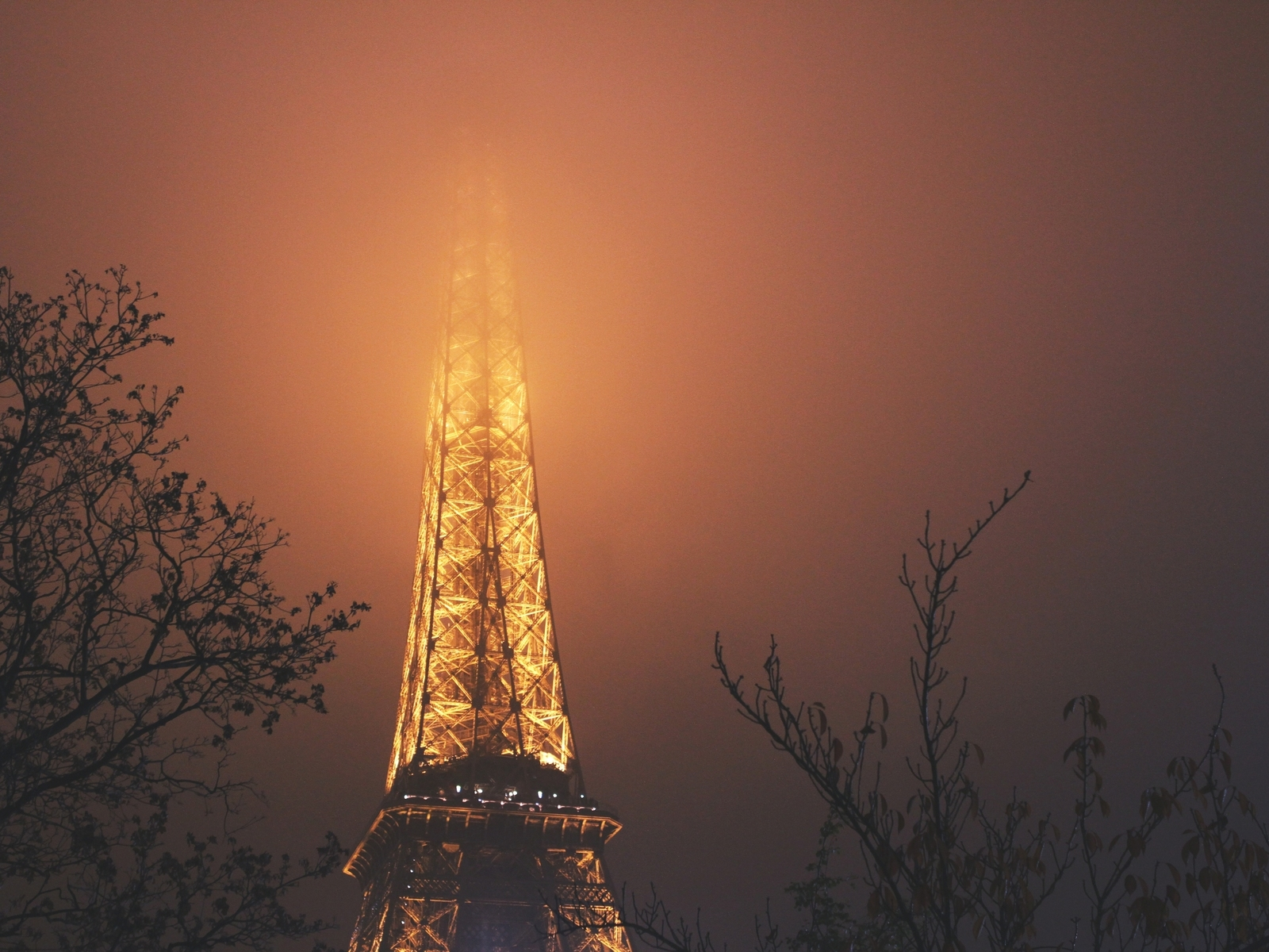 The Eiffel Tower in the fog