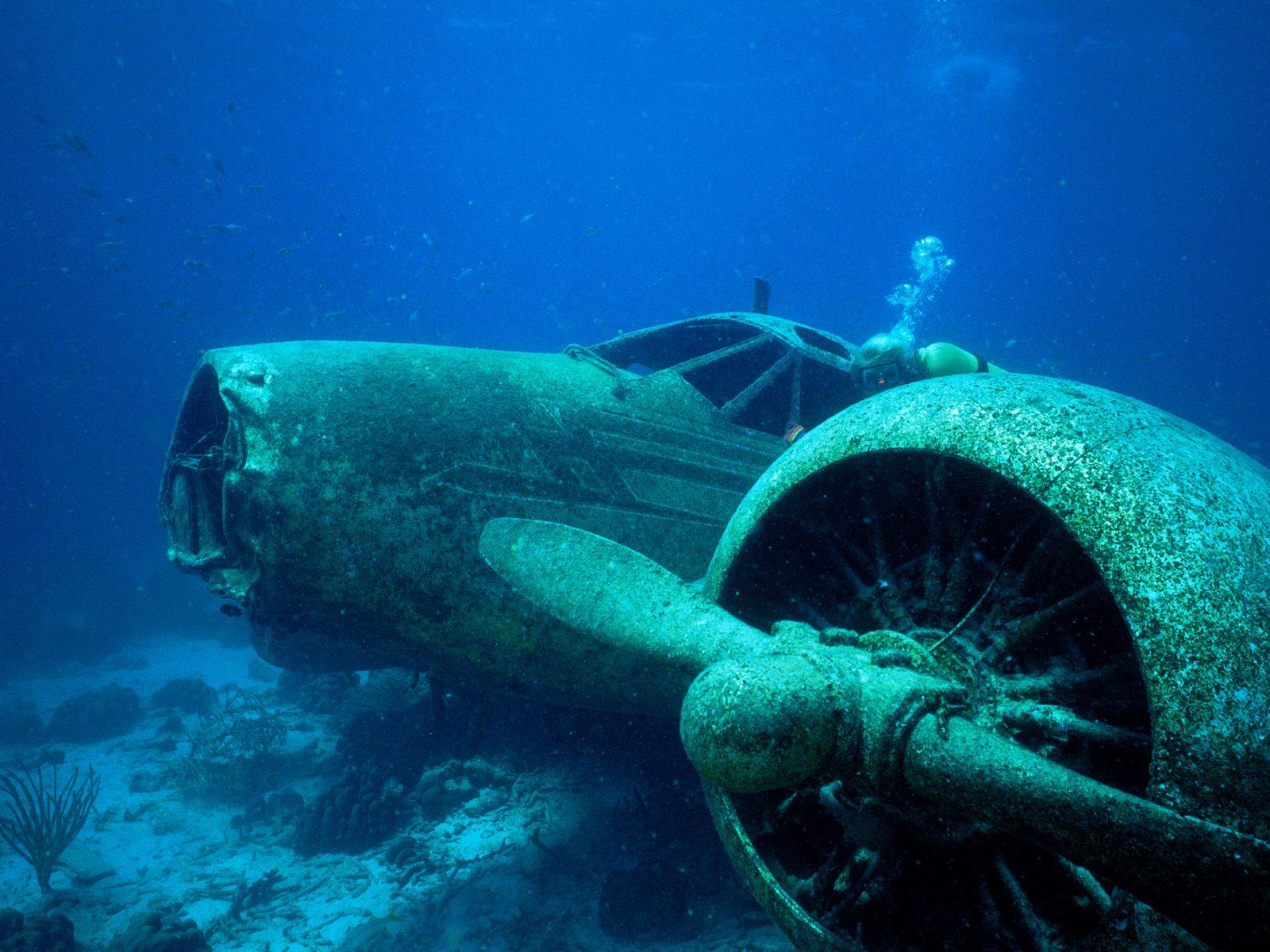 Sunken airplane and divers wallpaper - Aviation