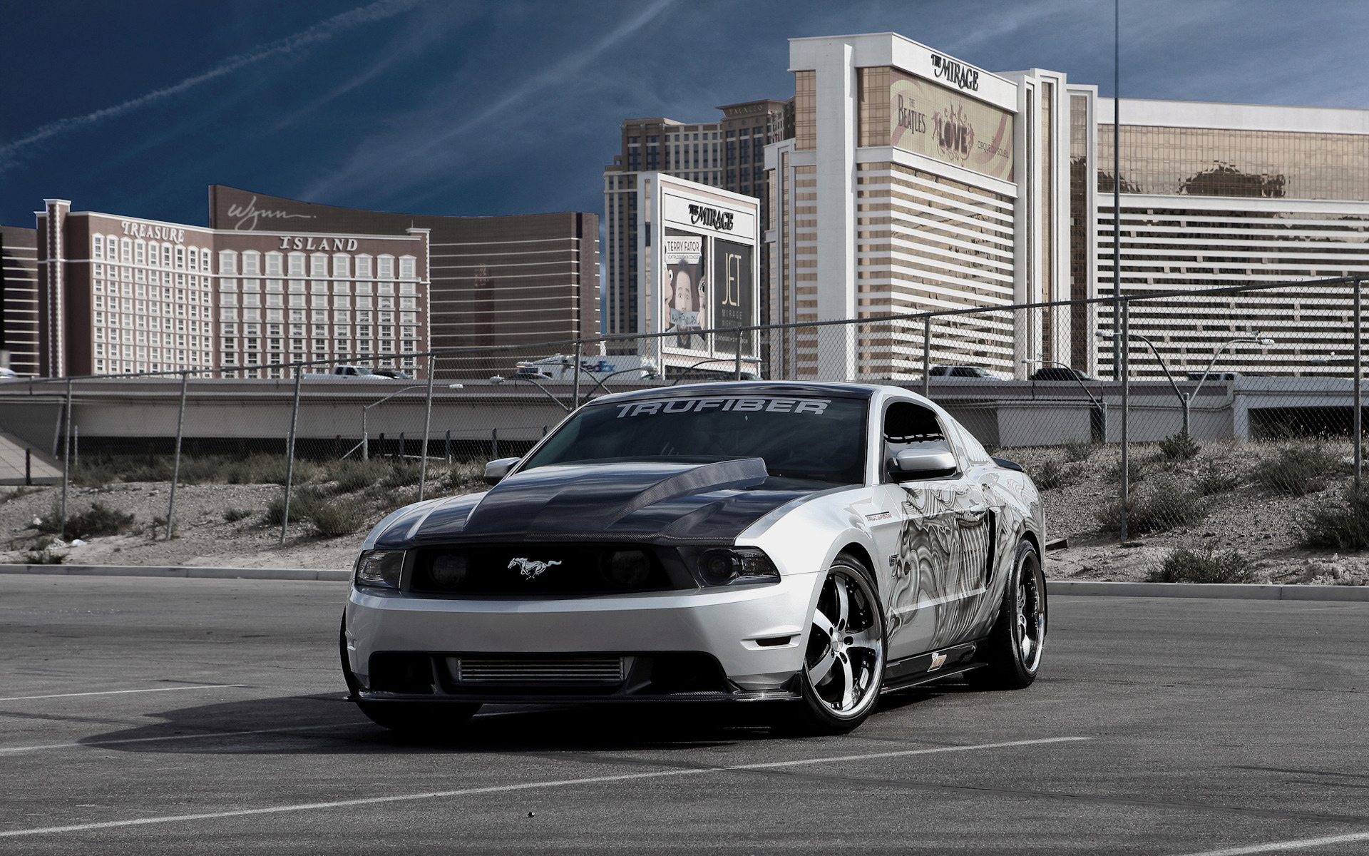 Photo Ford Mustang gray with airbrush on the side.