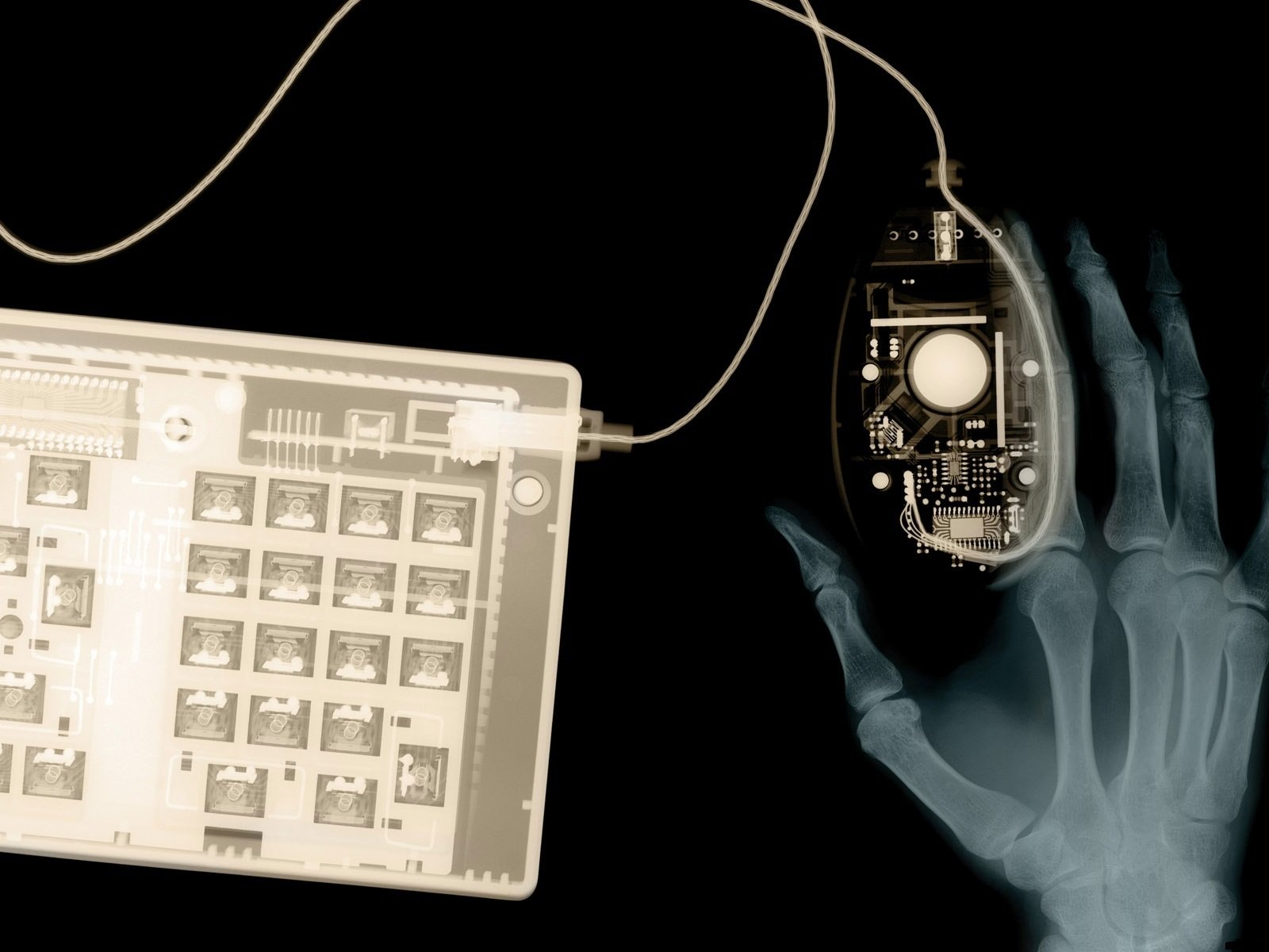 X-rays keyboard and mouse