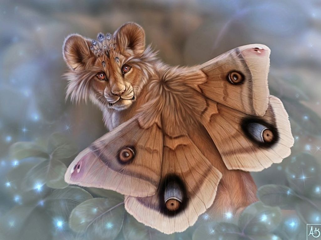 Lioness Butterfly