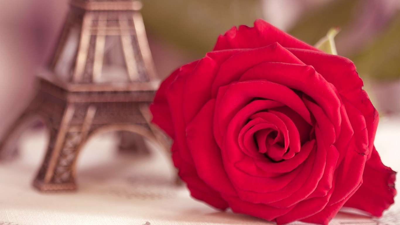 Rose figurine Eiffel Tower