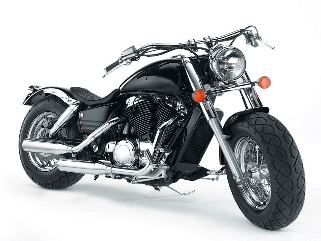 Handsome Harley - front view on white background, wallpaper for your desktop.