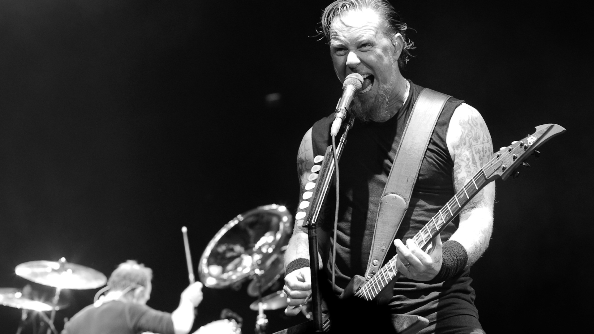 James Hetfield, Metallica - Photos from the concert