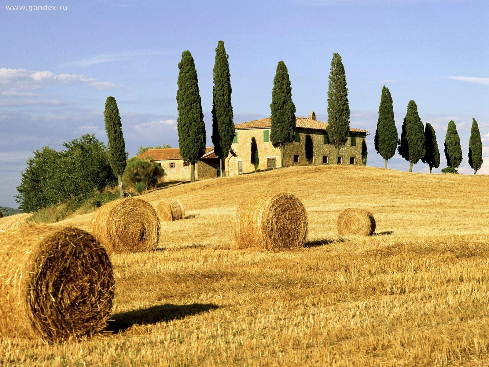 Beautiful Tuscany, Italy - nature - the background on your desktop