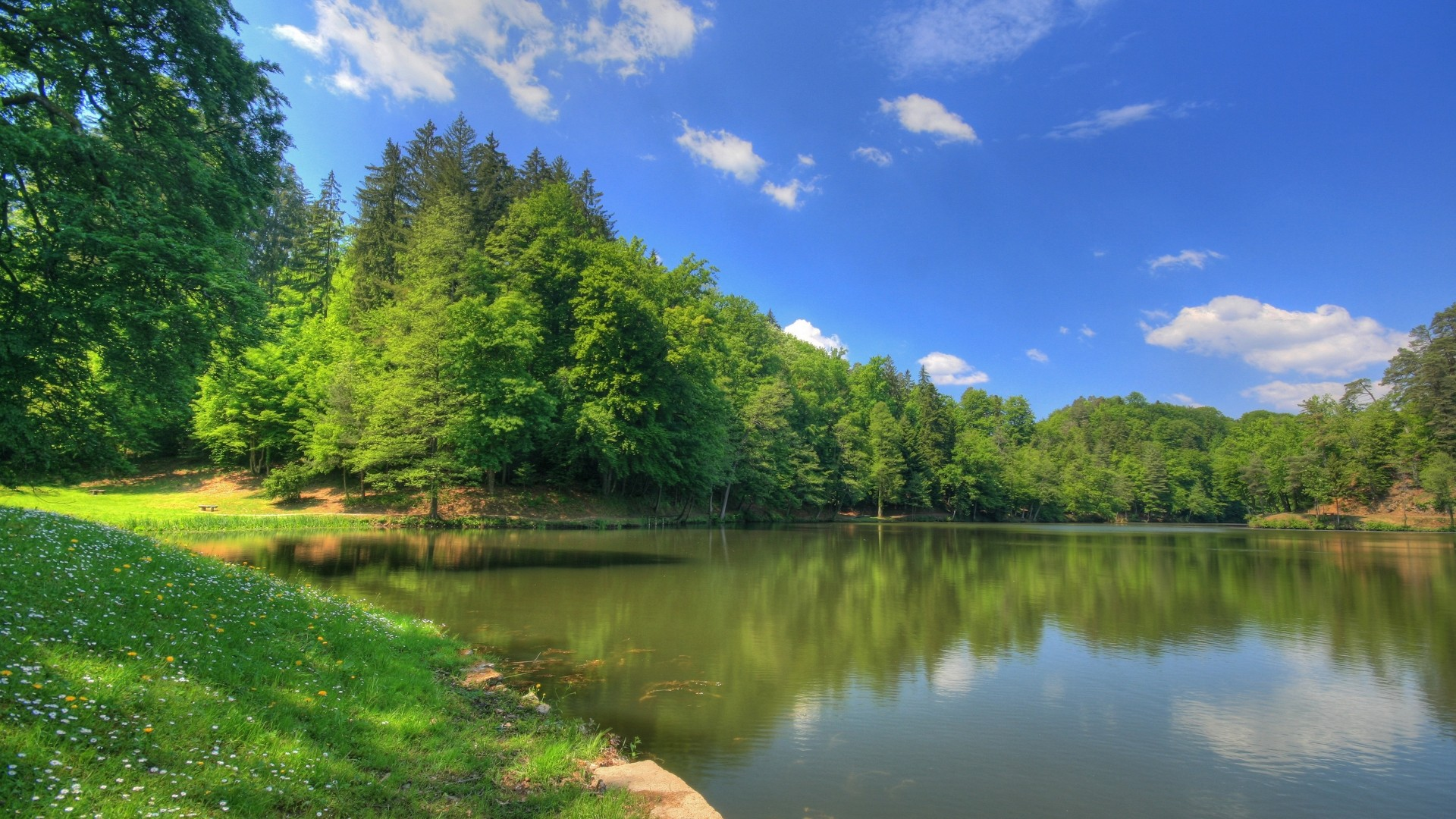 Forest Lake in Russia, photo wallpapers of nature