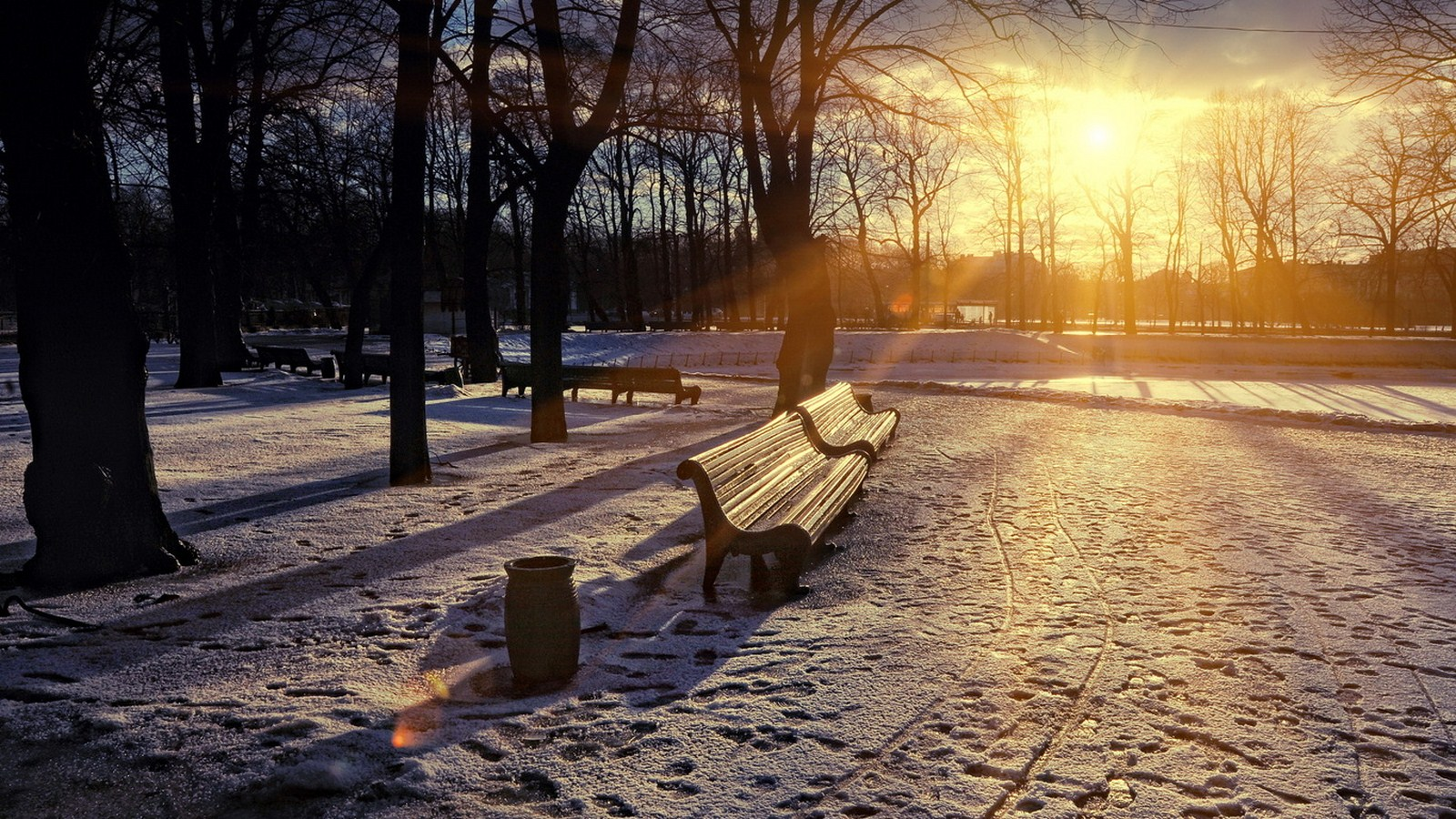 Park benches trees sun snow melts