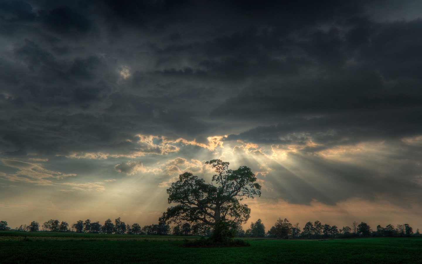 The rays of the sun through the clouds