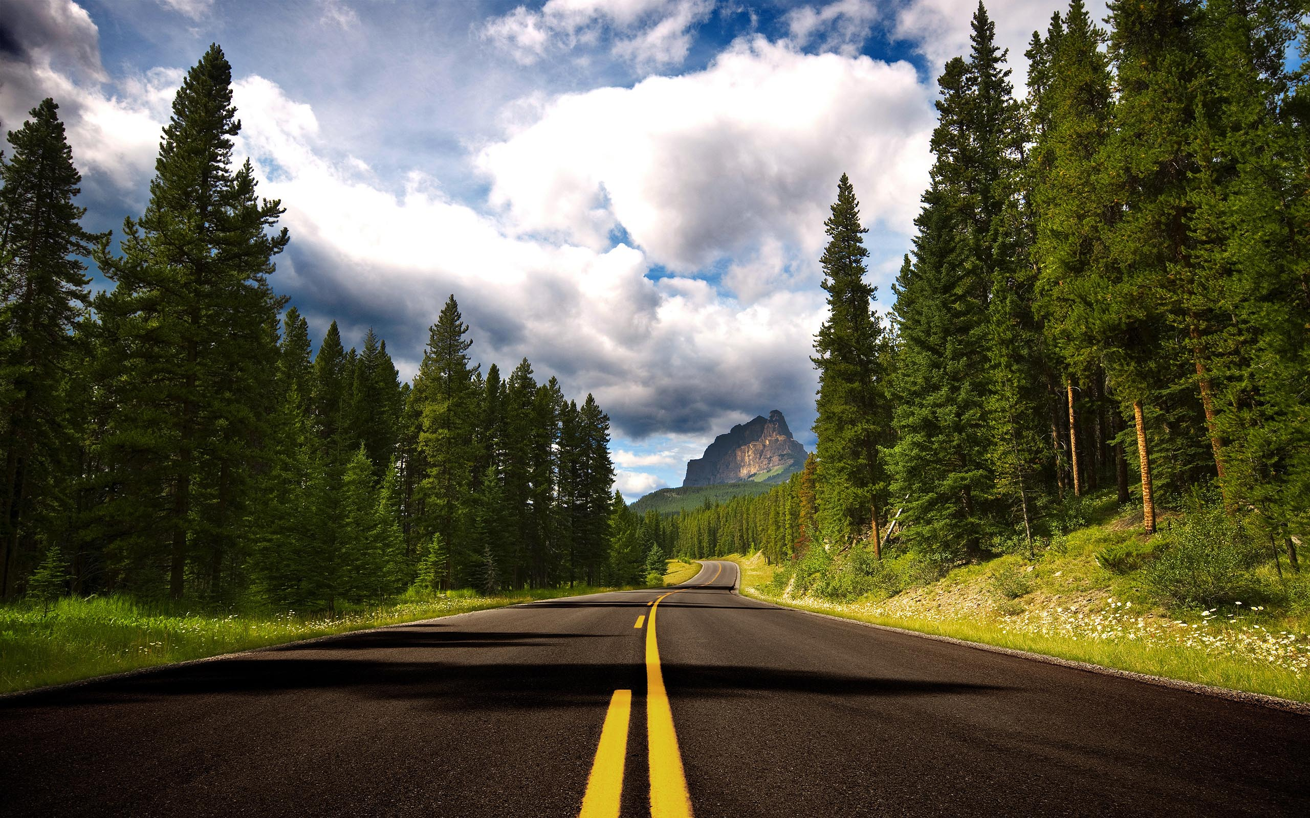 The road ...