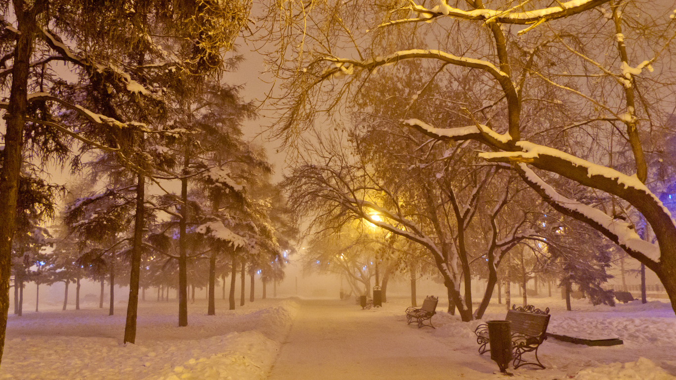 Winter evening snowstorm
